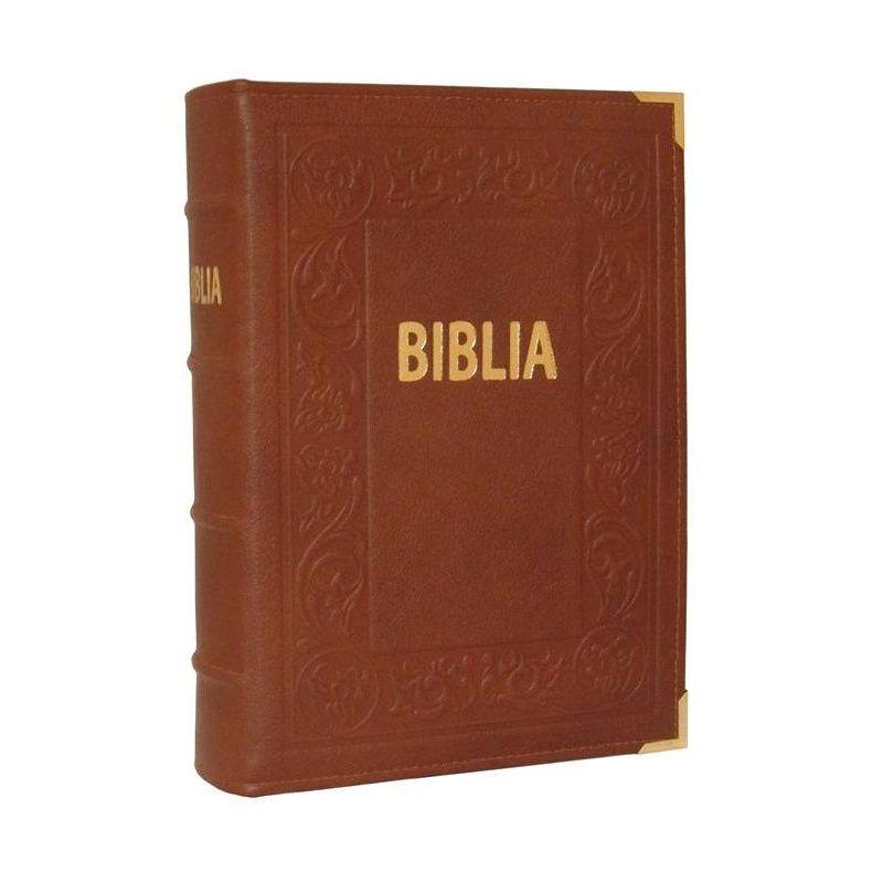 Biblia Tysiąclecia ilustrowana Ziemia Święta brąz